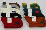 Les femmes personnalisé coloré Chaussettes Shot cheville avec beaucoup de style Mesdames fashion Chaussettes fantaisie