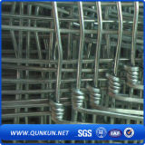 Rete fissa galvanizzata del bestiame del campo annodata ferro della rete metallica