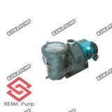 Наивысшая мощность Plastic Swimming Pool Pumps с Pre Filter