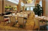 De Stoel en de Lijst van de Reeksen van het Meubilair van het Hotel van de Reeksen van het Meubilair van het restaurant/het Dineren van het Meubilair/het Dineren (glct-008)