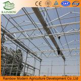 Tipo estufa de vidro de Venlo para a agricultura/vegetal/planta