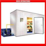 Sala de armazenamento/Modular Sala de Armazenagem Fria/carne na sala de armazenagem de congelador