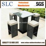 Barra di vimini impostata/mobilie della barra della mobilia/Pub barra del rattan (SC-A7415)