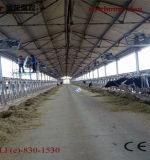 젖소 산업 팬
