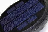 Indicatori luminosi solari fissati al muro del sensore chiaro attivati movimento sulla vendita