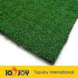 Landscaing jardín de césped (TJ-3501)