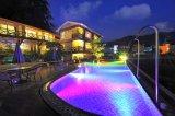 Luz subacuática de la luz de la piscina de IP68 3W-12W