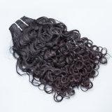 Оптовые волосы для сотка самых лучших Kinky курчавых волос Weave