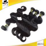Vente chaude du plus défunt cheveu brésilien dans le salon de cheveu