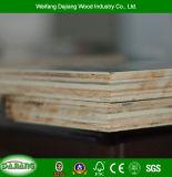 [شوتّرينغ] خشب رقائقيّ مع فيلم يواجه لأنّ بناء, أثاث لازم, زخرفة ويحزم [بلّتسن]