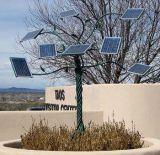 Comitato solare 3W, 5W, 10W, prezzo competitivo di Cemp PV Polycrystralline di offerta di 20W 30 50W 80W