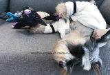 باردة محبوب بيجامات 100% قطر بيجامات صغيرة كلب قميص ليّنة زيّ محبوب طبقة مظهر