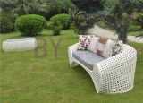 Weißes im Freiengarten-Wohnzimmer-hochwertiges Luxuxfreizeit-Sofa
