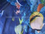 La publicité personnalisée d'impression numérique couleur le tissu de polyester de la bannière du pavillon