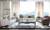 أسلوب حديثة يعيش غرفة بناء ثبت أريكة ([س6935])