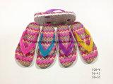 El deslizador del PVC de la manera calza los zapatos de la sandalia para las mujeres y la muchacha (YG520-1)