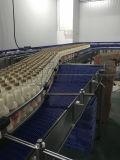 음료 산업을%s Hairise 컨베이어 시스템