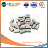 Ss10 K10 K20 P20 P30 Yg6 Carbide Gesoldeerde Uiteinden