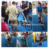 공장 가격 (NY-FB001)를 가진 새로운 디자인 접히는 자전거
