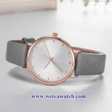 OEM Custom Mesdames montres quartz wist, Lady alliage Watch (WY-17042)