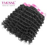 イボンヌの深い波のバージンのRemyのブラジルの毛の織り方は出荷を解放する