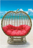 Ротанга Paito мебели отдыха софа напольного Wicker для сбывания (TG-JW28)