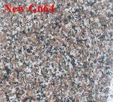 Granito Polished poco costoso nuovo G664 di colore rosso di prezzi della Cina per il Libano ed il Giordano