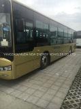 Bus turistico di lusso elettrico del fornitore con l'alta qualità