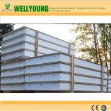 XPS/espuma do painel do tipo sanduíche de EPS para pavimentos de telhado e parede