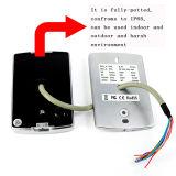 Pin de metal y control de acceso independiente de la tarjeta