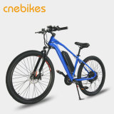 이동할 수 있는 리튬 이온 건전지, 배터리 충전기를 가진 전기 산악 자전거