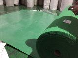 La Expo de alfombras para el uso de la Expo