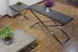 Muebles superiores de madera imitados de la sala de estar del vector de la lámpara de vector de extremo del vector de la cara del vector de consola del acero inoxidable