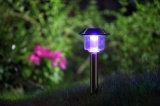 Il vario colore della decorazione ricaricabile illumina il LED solare