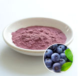 Hersteller des Blaubeere-Konzentrates Extract/FDA; ISO22000; Rein; SGS; Halal.
