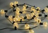 La fabbrica calda della lampadina della stringa del giardino dell'albero di Natale di vendita direttamente fissa il prezzo di