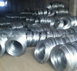 中国の試供品が付いている製造業者によって電流を通される鉄ワイヤー