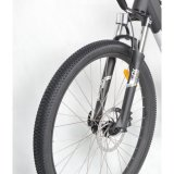 販売(FR-TDB20Z)のためのハイブリッド完全な中断山Eのバイク