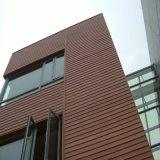 Revestimiento plástico de madera al aire libre de la pared exterior del panel de pared del compuesto WPC