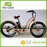 脂肪質のタイヤのEbikes 48V 500Wの電気自転車山のE自転車MTBの中断Eバイク