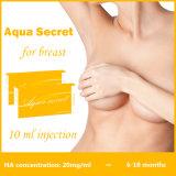 De kosmetische Hyaluronic Zure Injecties van de Schoonheid om Billen te kopen