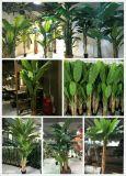 Migliori piante artificiali di vendita dell'albero di banana Gu-FF-Banana-17-2