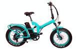 20inch車輪のEバイクの後部モーター都市折る自転車のマウンテンバイク(TDN05F)