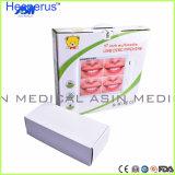 Intra moniteur lcd oral des Pixel 17inch du système 500mega d'appareil-photo avec l'endoscope dentaire d'USB avec le support Asin Hesperus d'affichage à cristaux liquides