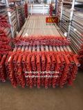 As1576 de Australische StandaardVerbindingsstangen van de Componenten van de Steiger Kwikstage