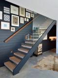 새로운 디자인 유리제 방책 목제 보행 계단