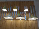 Lâmpada de alumínio de suspensão do pendente da iluminação do projeto o mais novo popular para a decoração da sala de jantar
