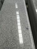 Graniet van Nice van de Prijs van de Eigenaar van de steengroeve het Concurrerende Grijze Kleur Opgepoetste