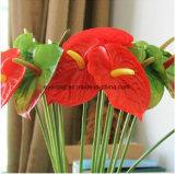 Plante tropicale vraie touche pu l'Anthurium Fleur artificielle unique