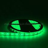 Indicatore luminoso di striscia dell'insieme 5050 SMD 60LED LED di bianco 5m di RGB delle strisce del LED
